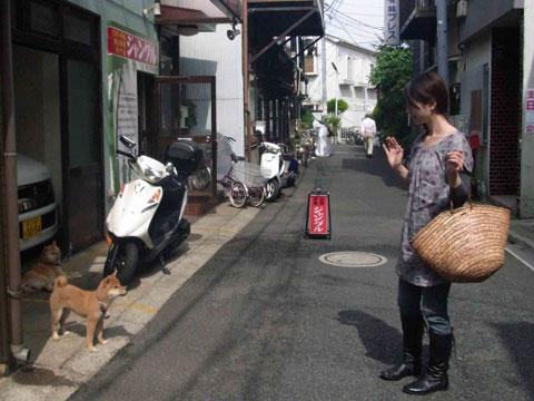110619_fuji5