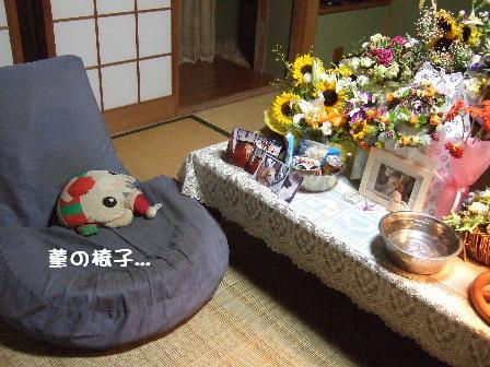 菫の椅子.JPG