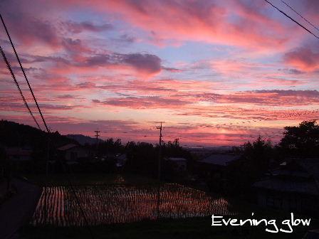 Evening glow1.JPG