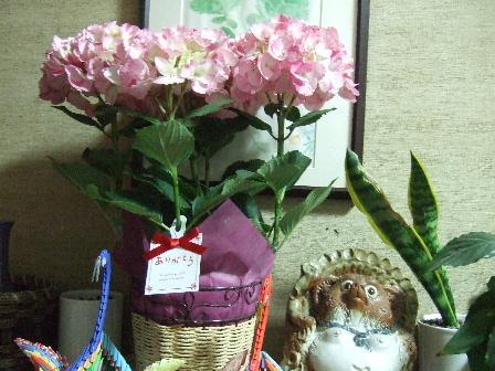 母の日のプレゼント.JPG