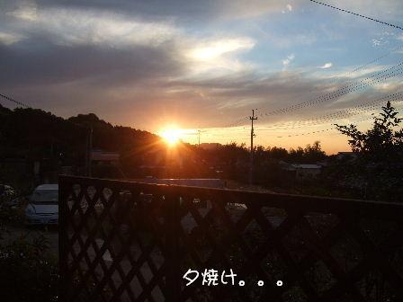夕焼け2.JPG