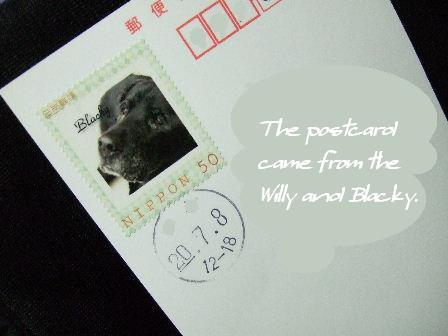 The postcard came from the Willy and Blacky..JPG