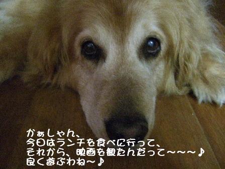 菫1.JPG