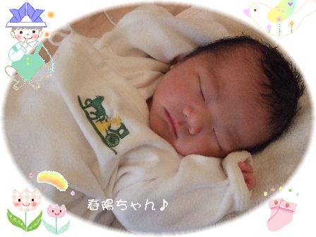 春陽ちゃん3.JPG