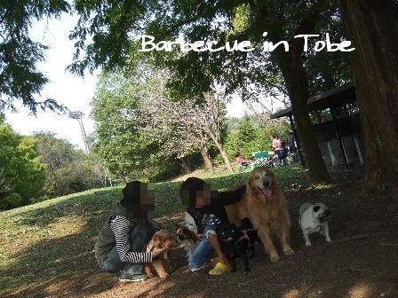 Barbecue in Tobe5.JPG
