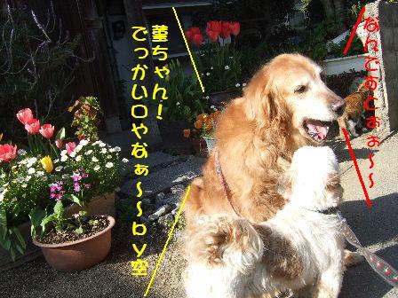 菫&空ちゃん.JPG