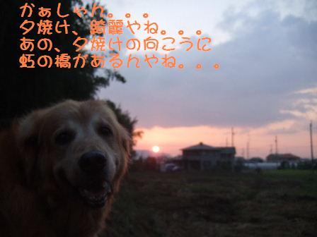 夕焼け.JPG