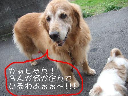 たくらみ.JPG