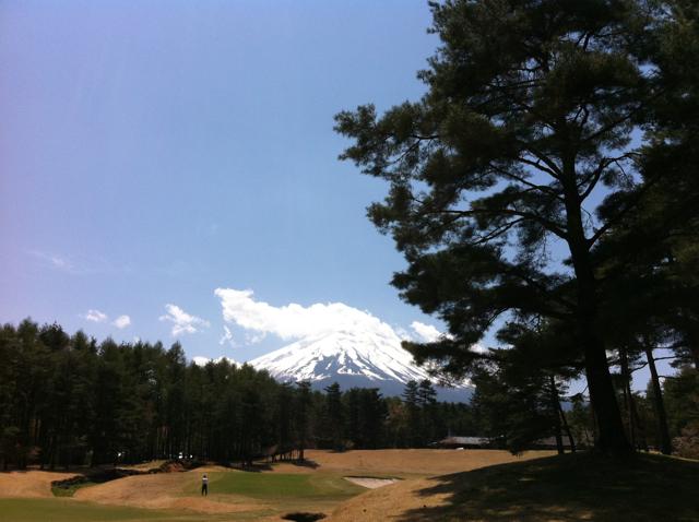 富士桜201105_2