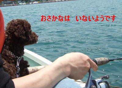 2006_0601山中湖0069a.JPG