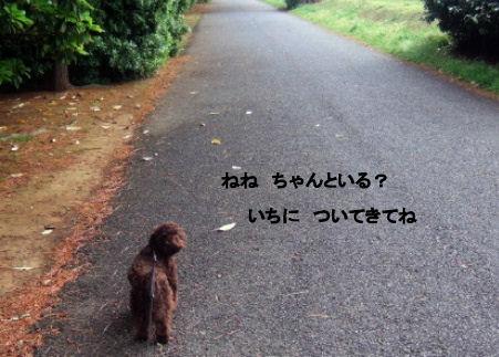 2006_05100007 (2).JPG