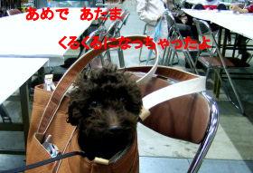 2006_0429IKEYA・pet博0019 (3).jpg