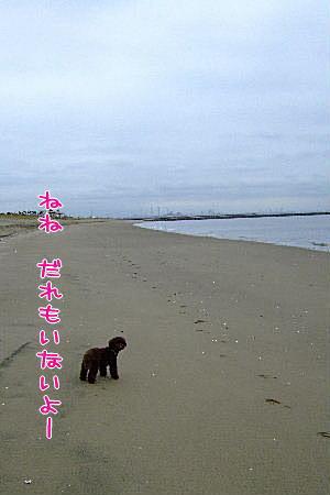 2007_0830夏休み0052a.JPG