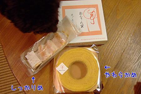 2008_01040036a.JPG