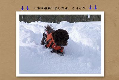 動画表紙2.jpg