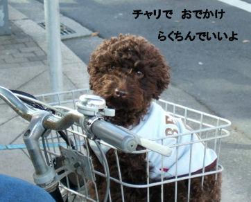 2006_0504pet博(再)0036 (2).JPG