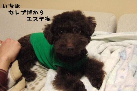 2007_01250014a コピー.JPG