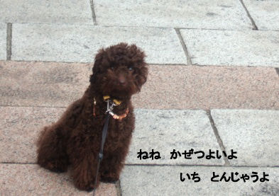 2006_0507pet博(再2)HS0016 (2).JPG
