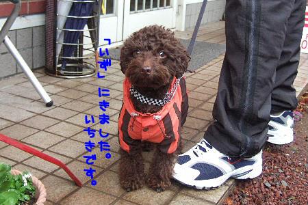 2007_0107izu0043a コピー.JPG