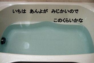 2006_05170013 (2).JPG