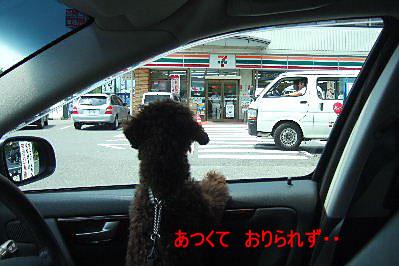 2006_0809車山旅行0003 コピー.JPG