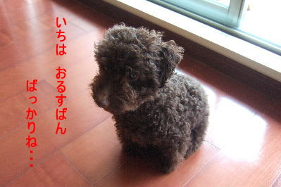 2006_08050011 コピー.JPG