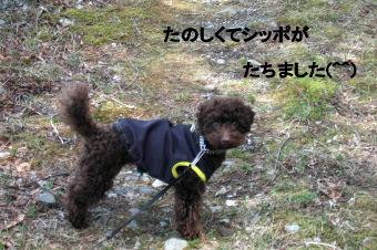 2006_0417那須旅行0079 (3).jpg