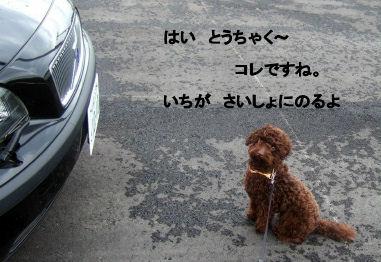 2006_0507pet博(再2)HS0029 (2).JPG