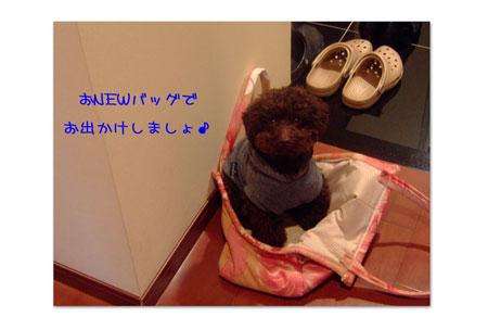 handmadebag6.jpg