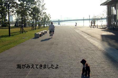 2006_1016ららぽ豊洲0011 コピー.JPG