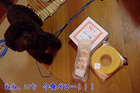 2008_01040038a.JPG