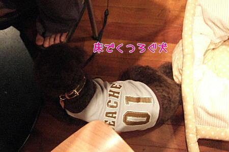 2007_0726hoshinoya0154a.JPG