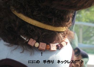 2006_0507pet博(再2)HS0008 (2).JPG