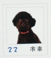 2006_0423カレンダー0080 (2).JPG