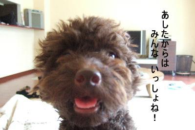 2006_08050018 コピー.JPG