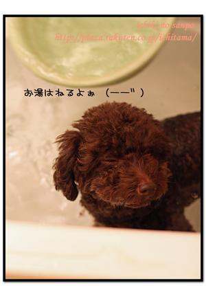 にんにく風呂4.jpg
