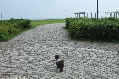 2006_0819しぶごえ館山0011a.JPG