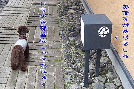 2007_0726hoshinoya0124a.JPG