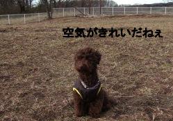 2006_0417那須旅行0064 (3).jpg