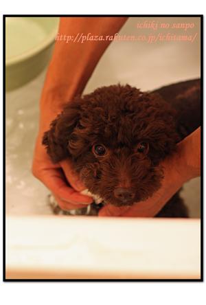にんにく風呂3.jpg