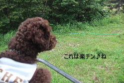 2006_0809車山旅行0060 コピー.JPG