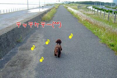 さんぽ8.jpg