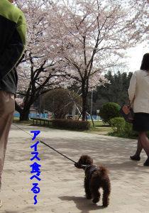 2006_0417那須旅行0083 (3).jpg