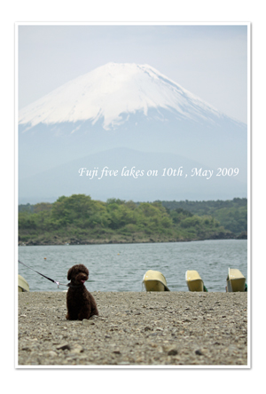 富士五湖1.jpg
