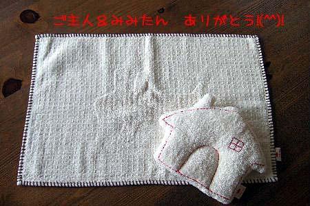 2007_05050001 コピー.JPG