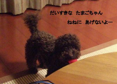 2006_05200054 (3).jpg