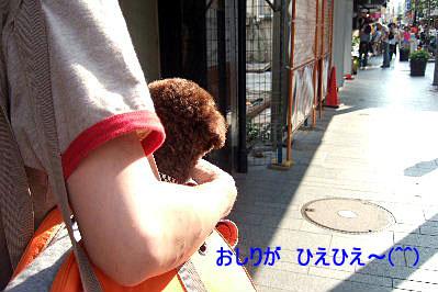 2006_08140115 コピー.JPG