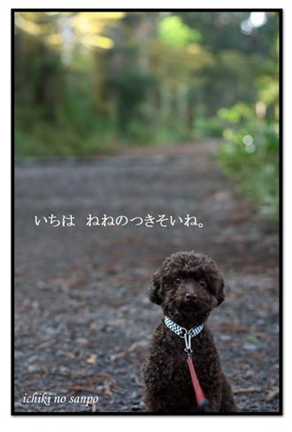 元箱根8.jpg