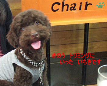 2006_08140106a コピー.JPG