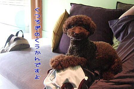 2007_0726hoshinoya0161a.JPG